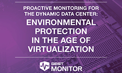 Environmental Protection in the Age of Virtualization