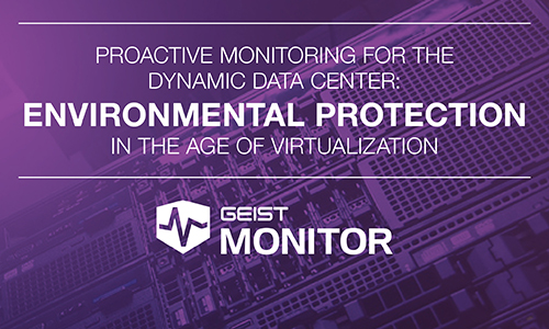 Environmental Protection in the Age of Virtualization - White Paper